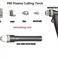 plasma p80
